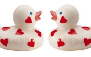 jumbo-love-duck